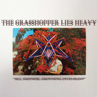 Grasshopper Lies Heavy - All Sadness, Grinning Into Flow