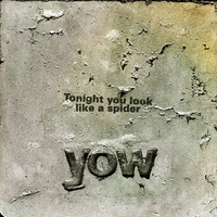 Yow - Tonight You Look Like A Spider