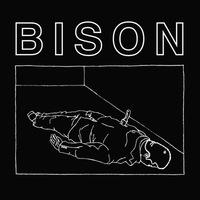 Bison B.C. - One thousand Needles - EP - 2014