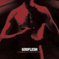 Godflesh - A World Lit Only By Fire - 2014