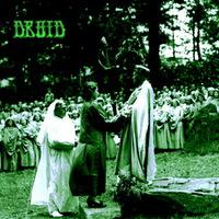 Druid - Druid - 2014
