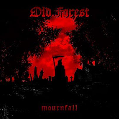 oldforest21.jpg