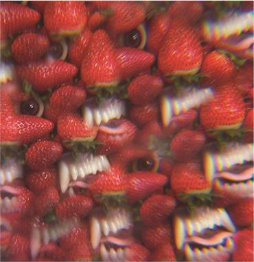Thee-Oh-Sees-Album-cover.jpg