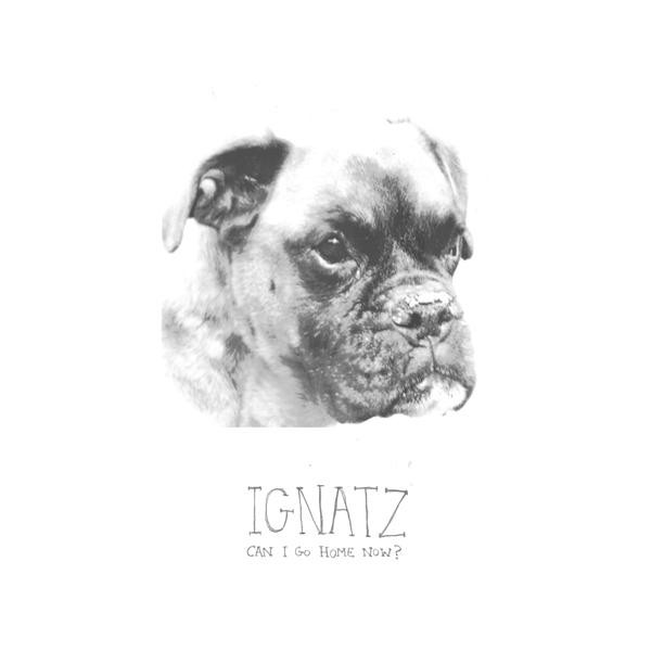 ignatz-canigohomenow2013.jpg