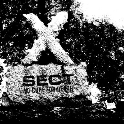 sect-cover-web-1024x1024.jpg