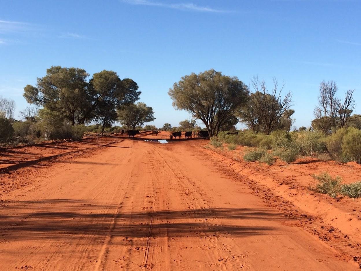 outback-931192_1920.jpg