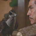 James Clawell  Ázsia saga 3. – A japán történetek - Sógun és Gajdzsin.