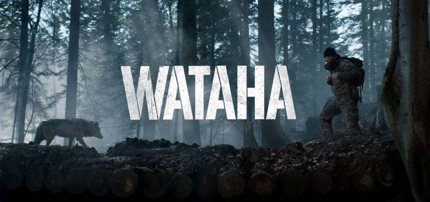 wataha_33.jpg