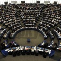 Nyilvános meghallgatás az őshonos kisebbségek védelméről az EP szakbizottságában