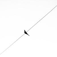 A párkapcsolati magány és a hógolyó