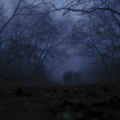 Zoboron ködben