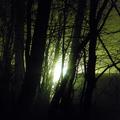 fény 2