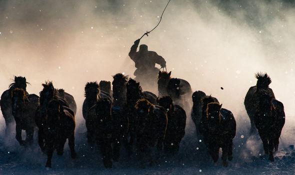 natgeo-winter-horseman-grand-prize-winner-685455.jpg