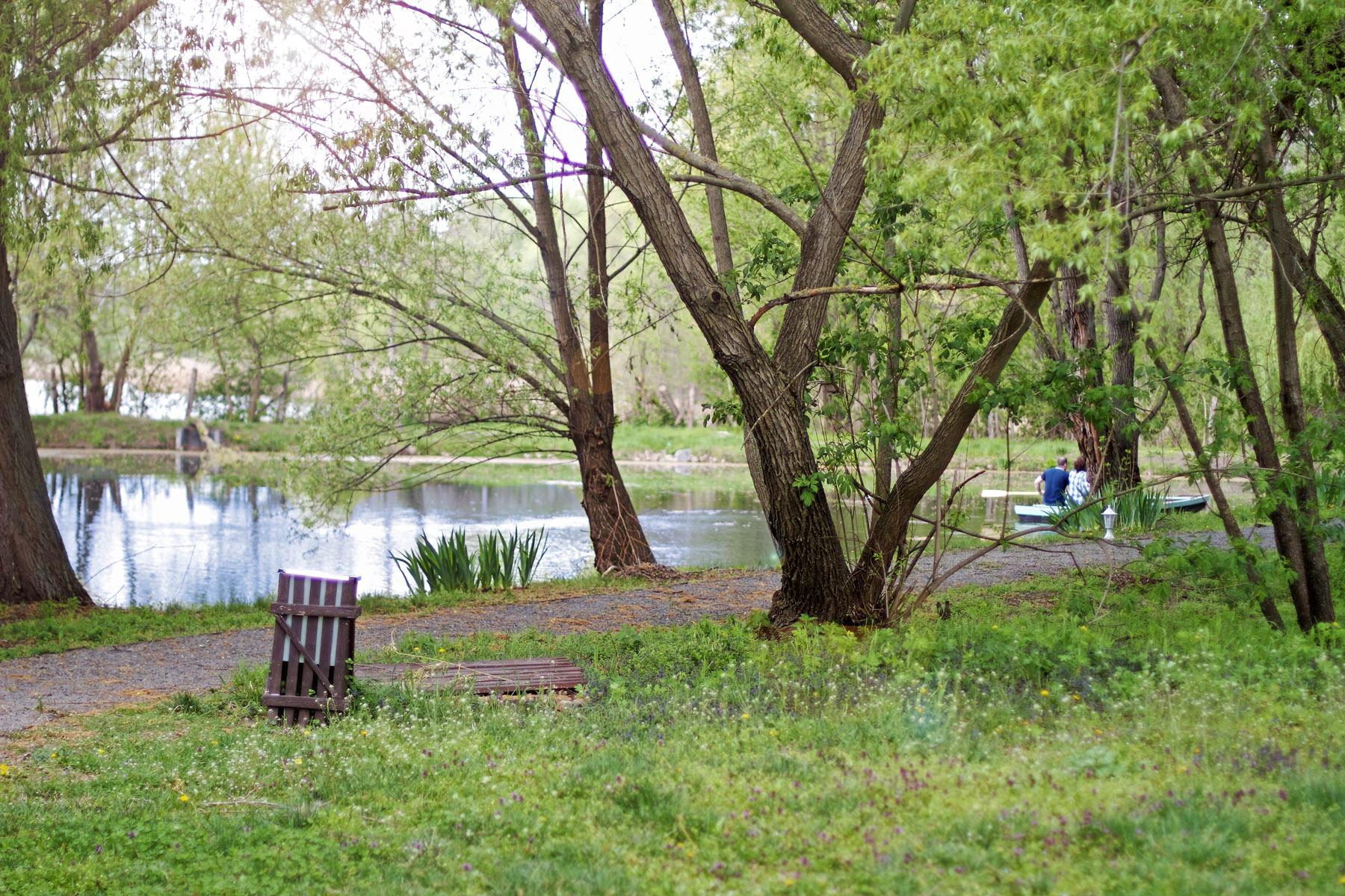 A Zichy Park tava