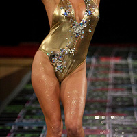 Pamela Anderson a kifutón