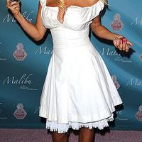 Ikon extra: Pamela Anderson