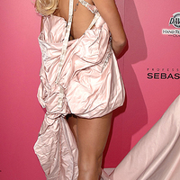 Ikon of the day: Pamela Anderson
