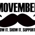 Miért növesztenek a férfiak szakállat Novemberben?