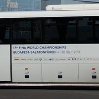 #FINABALATONFÜRED2017