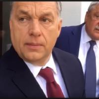 Csányi és Orbán: ki fog repülni?
