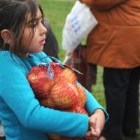 Becsapott,csalódott csepeli családok