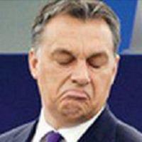 Miért dobják a szemétbe  Csepelen Orbán  konzultációs hazugságlevelét?