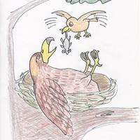 Madárlátta törvény - Karikatúra Kalocsai Imrétől