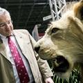 Az állatok királya az Országos Vadásznapon
