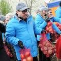 Kál Károly: Krumpli és egyéb huncutságok