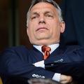 Tősgyökér Orbánnal