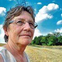 Erről hallgatnak: gazdák földjét veszik el a cölöpverők