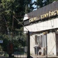 Ötven éve: kenyérgyárat Csepelre,  hévet a föld alá, kórházat Dél-Pestre