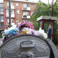 Patkányinvázió a kerületek utcáiban, kommunikációs zűr  a kukaholdingnál