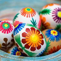 Még jó, hogy ennyi tojás van most otthon! A héja aranyat érhet