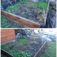 Téli kerti munka: a kerttervezés
