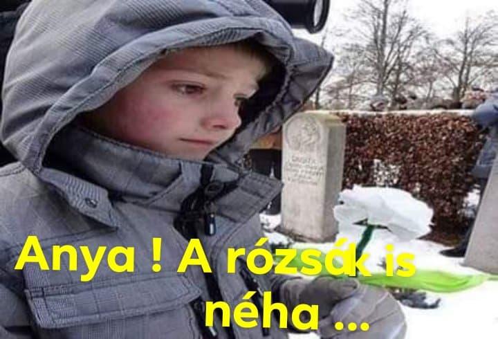 anya_a_rozsak_is_neha.jpg