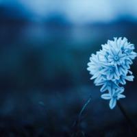 7 ok, hogy mindennap gyakorolj fordított pózokat