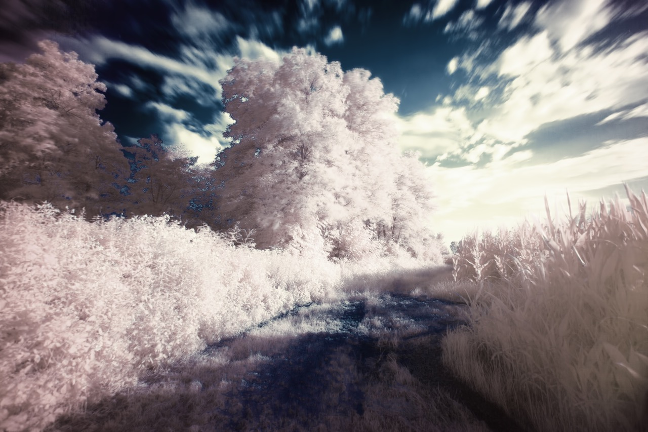 dream-filter-infrared-surreal.jpg