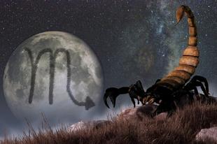 Nap a skorpió jelébe lép – 2019. október 23-2019. november 21.