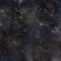 Csillagképek: a Bika és egyéb állatfajták