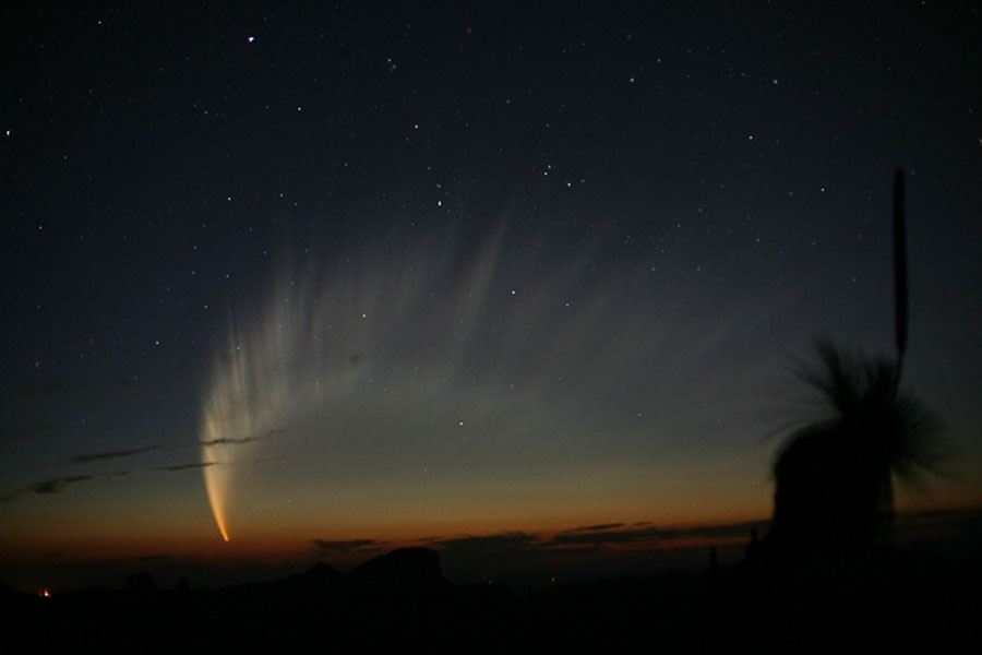 comet_mcnaught.jpg