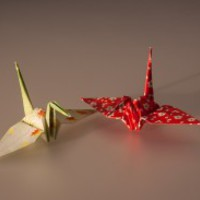Origami Daru Kollekció hamarosan!!!