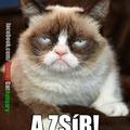 Grumpy Cat: Nem a ruha kövérít