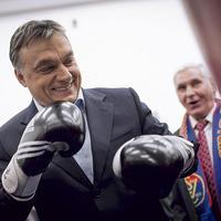 Soros menti meg Orbánt Simicska bosszújától