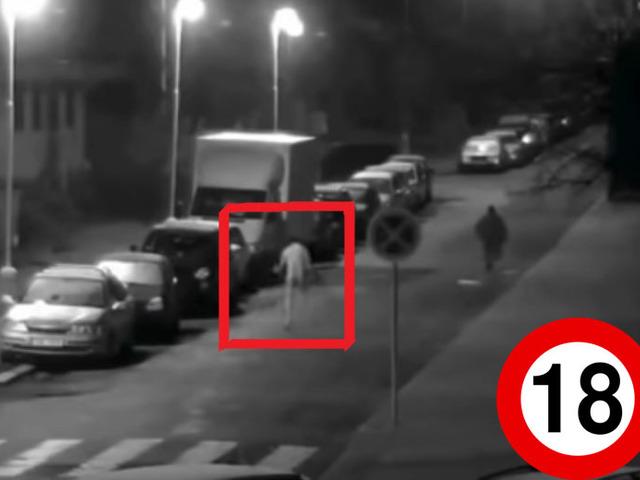 Farkasember támadt a rendőrökre Csehországban
