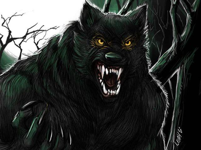 Farkasember-vadászok