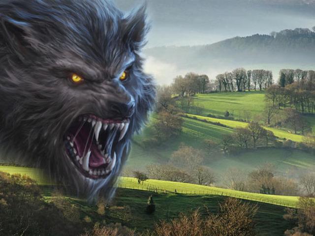 Farkasember a vidéki Angliában