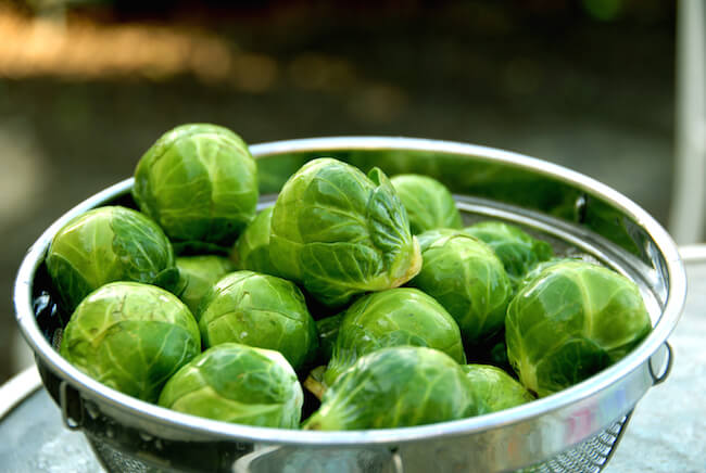 brussels-sprouts-in-bowl.jpg