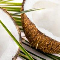 Eltömíti a kókuszolaj az artériákat?