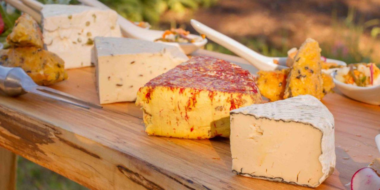 vegan-cheese-e1516696707777-1280x640.jpg